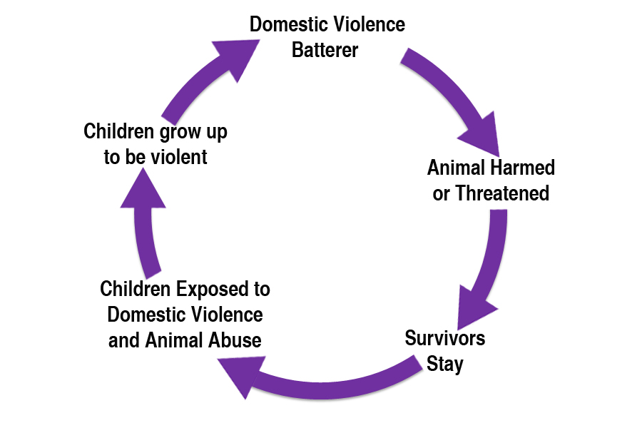 """The """"Link"""" with Domestic Violence 